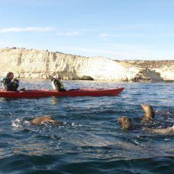 La ciudad chubutense de Puerto Madryn está lista para recibir al turismo este verano.