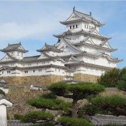 Japón debió suspender la promoción turística interna debido a un rebrote de coronavirus.