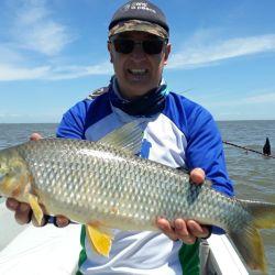 Pesca de bogas en los malecones de Berisso.