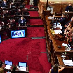 Vice-President Cristina Fernández de Kirchner opens the session at the Senate to decide whether to legalise voluntary abortions up to the 14th week.
