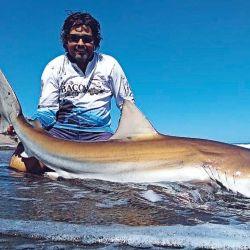 Para el número de enero preparamos un completo informe sobre la pesca de tiburón desde la costa.