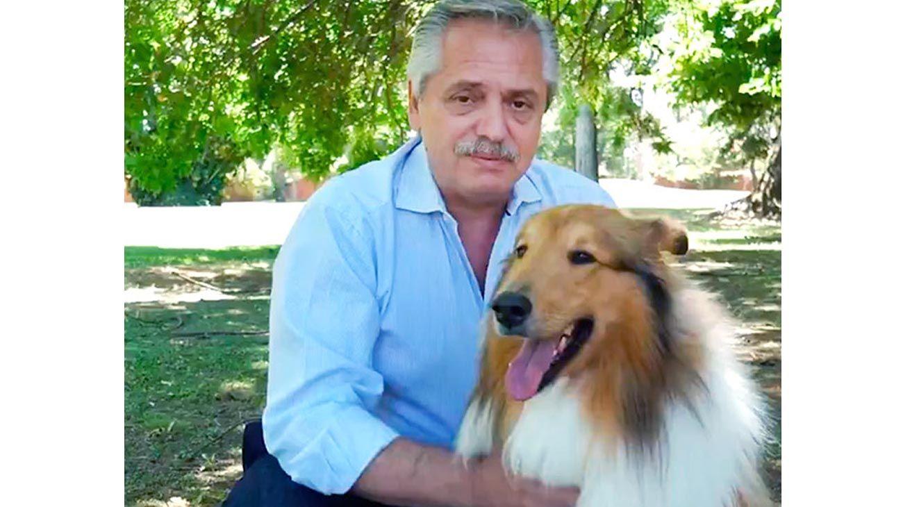 Caricias. Alberto F con su perro Dylan, en el video de salutación por el año nuevo.
