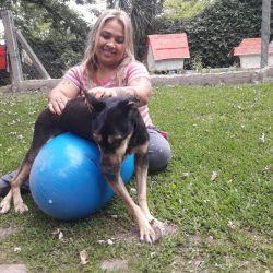 En el lugar que fue fundado en 2006 por Alicia Barreto viven más de 200 animales rescatados de la calle.