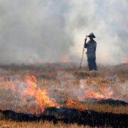 Un agricultor tailandés quema un campo de arroz en la provincia de Nakhon Sawan. | Foto:Chaiwat Subprasom / SOPA Imágenes vía ZUMA Wire / DPA