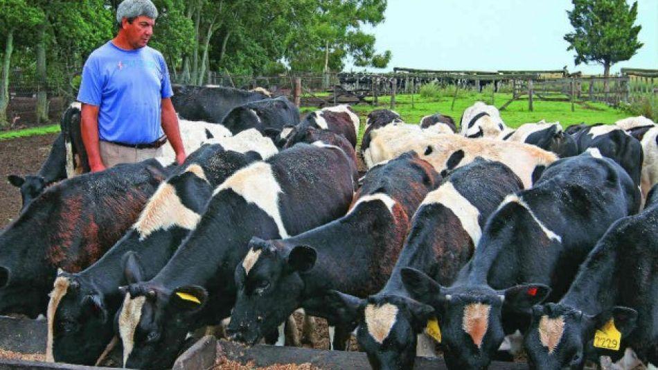 Trabajadores rurales.