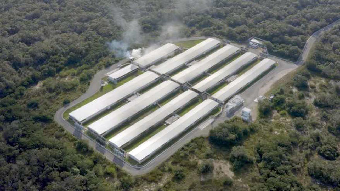 Una de las granjas de producción de cerdos ubicada en Yucatán, México.