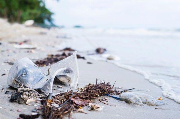 Según el último censo de Basura Costero-Marina en Argentina, el 83,2% estuvo constituido por plástico.