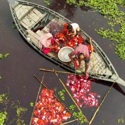En esta foto aérea, los trabajadores lavan la tela después de teñirla en Araihazar, a unos 50 km de Dhaka. | Foto:Munir Uz Zaman / AFP