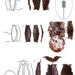 Lo que más les llamó la atención fue una espada que data de mediados del siglo II a.C., del tipo 'gladius hispaniensis'.
