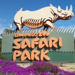 Actualmente, el zoológico de San Diego está cerrado al público debido a la pandemia.