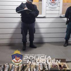 Los cazadores furtivos fueron sumariados por personal policial y guardafaunas.