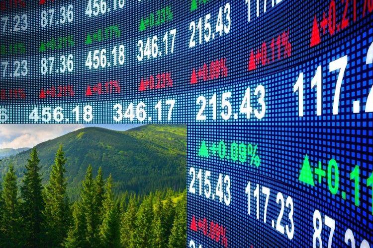 Se espera un crecimiento este año de bonos que favorezcan el cuidado del planeta.