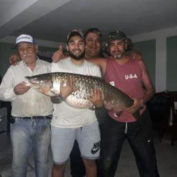 Más de una hora tuvieron que pelear, entre cinco personas, para poder atrapar al enorme pez.ada en un freezer.