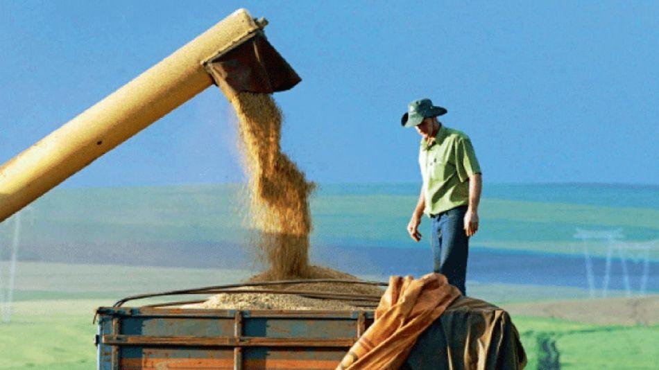 Qué hay detrás del salto de precio de los granos