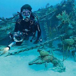 Secreto en los Océanos | Foto:Cedoc