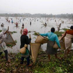Los aldeanos participan en un evento comunitario de pesca durante las celebraciones de la cosecha de Bhogali Bihu en el lago Goroimari en Panbari. | Foto:Biju Boro / AFP