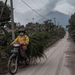 El monte Semeru se cierne sobre el pueblo de Lumajang, Java Oriental, después de una erupción un día antes.   Foto:Juni Kriswanto / AFP