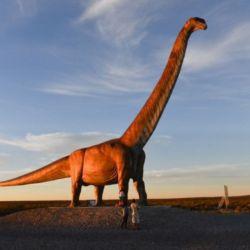 Los especialistas creen que supera en tamaño al Patagotitan mayorum, que, hasta ahora, era considerado el dinosaurio más grande del mundo.