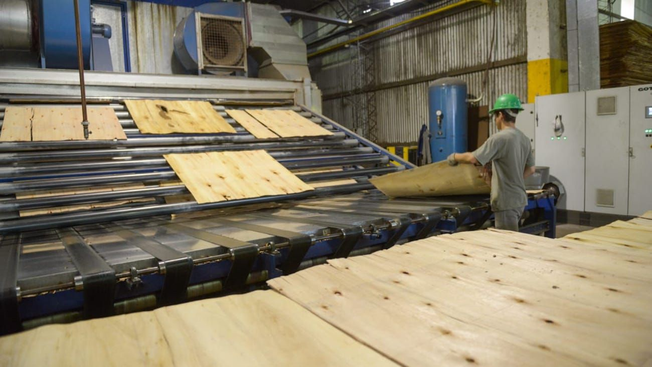 Argentina cuenta con El patrimonio de Argentina consiste en 1,3 millones de hectáreas de plantaciones forestales.