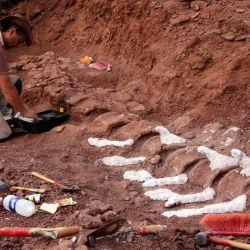 La imagen muestra a un paleontólogo durante una excavación en la que se encontraron fósiles de 98 millones de años, en la Formación Candeleros en el Valle del Río Neuquén, en el suroeste de Argentina. | Foto:Jose Luis Carballido / CTyS-UNLaM / AFP
