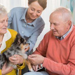 La presencia de un perro en la vida de una persona mayor supone un incremento de su salud.
