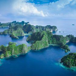 El curioso hecho tuvo lugar durante una excursión en barco por el imponente archipiélago de Raja Ampat, en Indonesia.