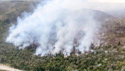 Incendio forestal en Río Negro