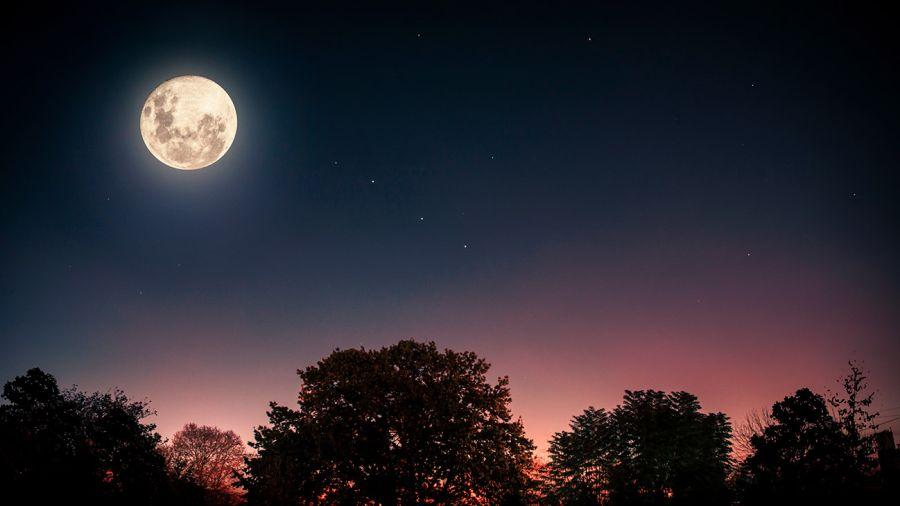 luna llena 20210126