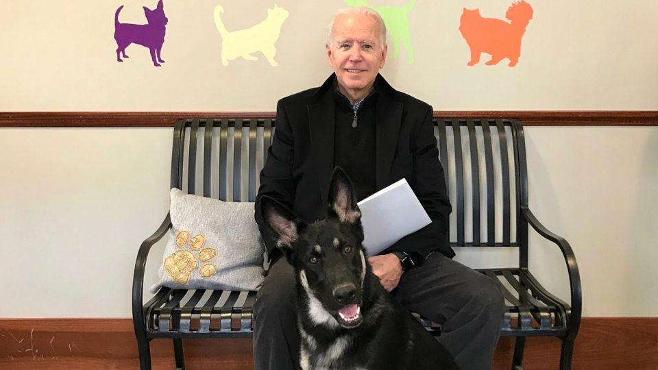 """los perros de Biden """"Major y Champ""""  20210126"""