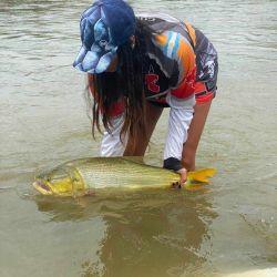 Pescamos muchos dorados de un porte mediano a pequeño; fue una pesca sumamente entretenida.