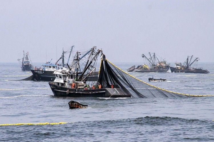 A inicios de este año, reportes oficiales señalaron la presencia de 105 buques en la milla 201