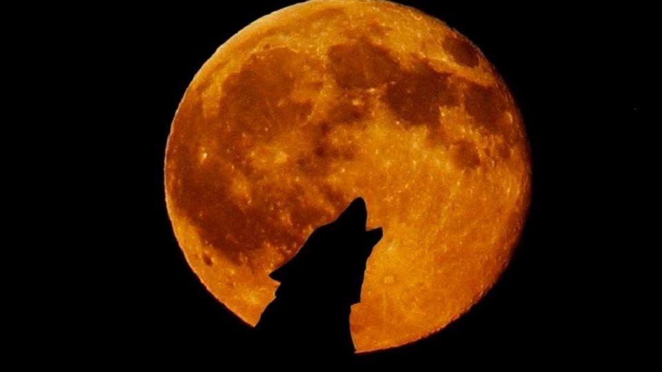 La Luna de Lobo o Luna de sangre será la primera Luna llena del año 2021.
