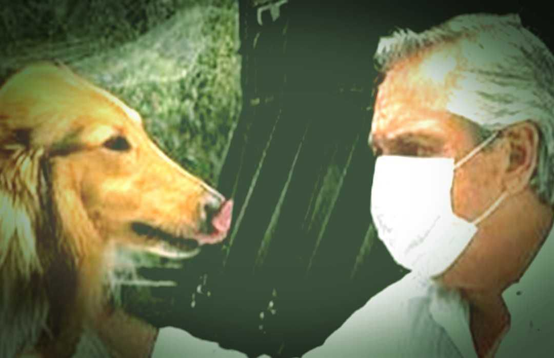 Alberto Fernández y su perro Dylan.