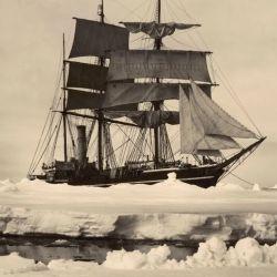 El 28 de enero Fabian Gottlieb Thaddeus von Bellingshausen avistaba el continente antártico.