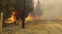 incendio en Río Negro 20210128