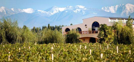 Bodega Argentina en el Top 10 de Wine Spectator