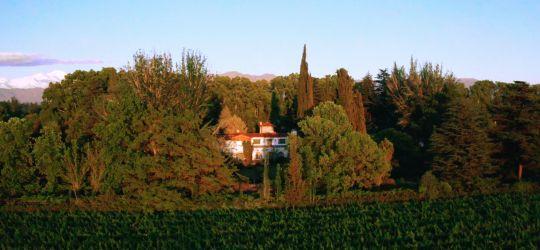 Trivento se expande para fortaceler sus vinos
