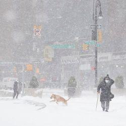 Se trata de la nevada más fuerte de los últimos cinco años en la Ciudad de Las Luces.
