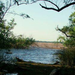 El Delta del Paraná es un humedal de importancia internacional.
