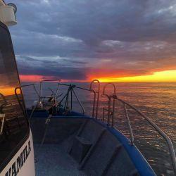 Para los que les gusta la pesca de pejerrey, al costado de la Isla Gamma, dieron con mucho escardón de 350 a 400 gramos.