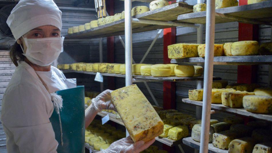 Elaboración artesanal de quesos