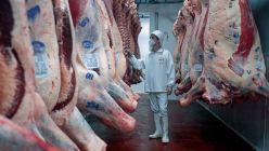 Frigorífico de carne vacuna