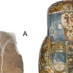 Se trata de la primera momia de este tipo que fue estudiada a través de métodos modernos de tomografía computarizada.