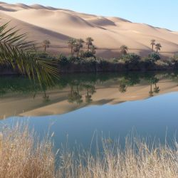 Según los especialistas, los períodos fértiles en el Sahara duraban 5.000 años cada uno.