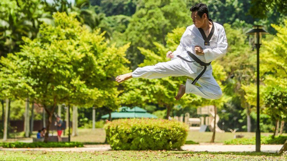 Artes marciales 20210209