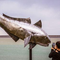 Con participantes residentes de Puerto Santa Cruz, la VI Fiesta Nacional del Róbalo y el 19° Concurso de Pesca Las 12 Horas del Róbalo arrancan el viernes con los más pequeños.