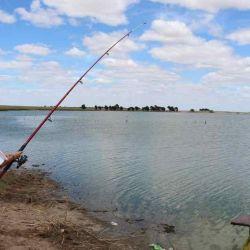 Dónde ir a pescar el fin de semana del 12 de febrero de 2020