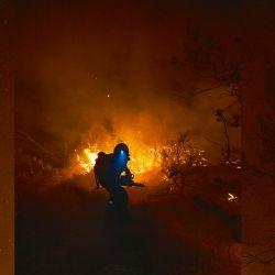 Brigadista combatiendo el fuego | Foto:GENTILEZA PABLO ALCORTA