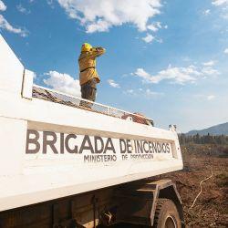 Brigadistas y vecinos voluntarios trabajan para combatir el fuego  | Foto:GENTILEZA PABLO ALCORTA