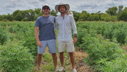 Facundo Garretón, ex diputado del PRO, y el abogado Sebastián Hochbaum son los argentinos dueños de Blueberries